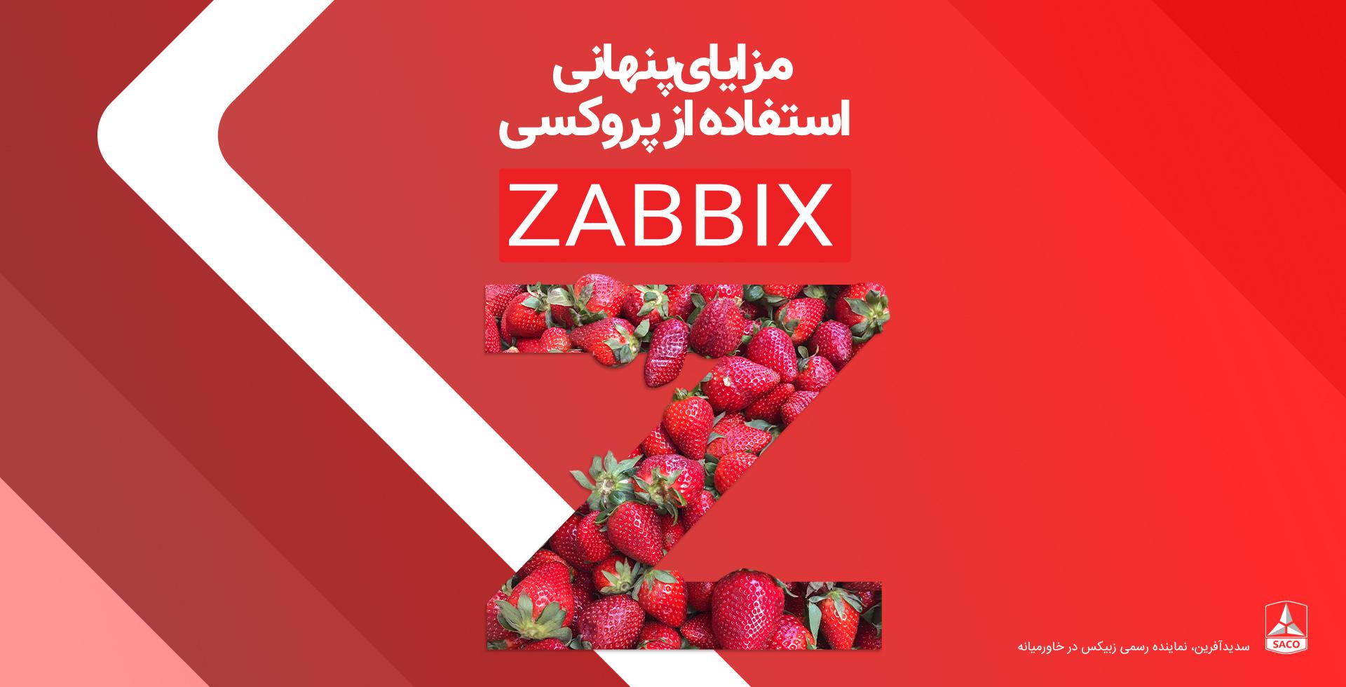 بررسی مزایای پنهان شده در استفاده از پروکسی زبیکس